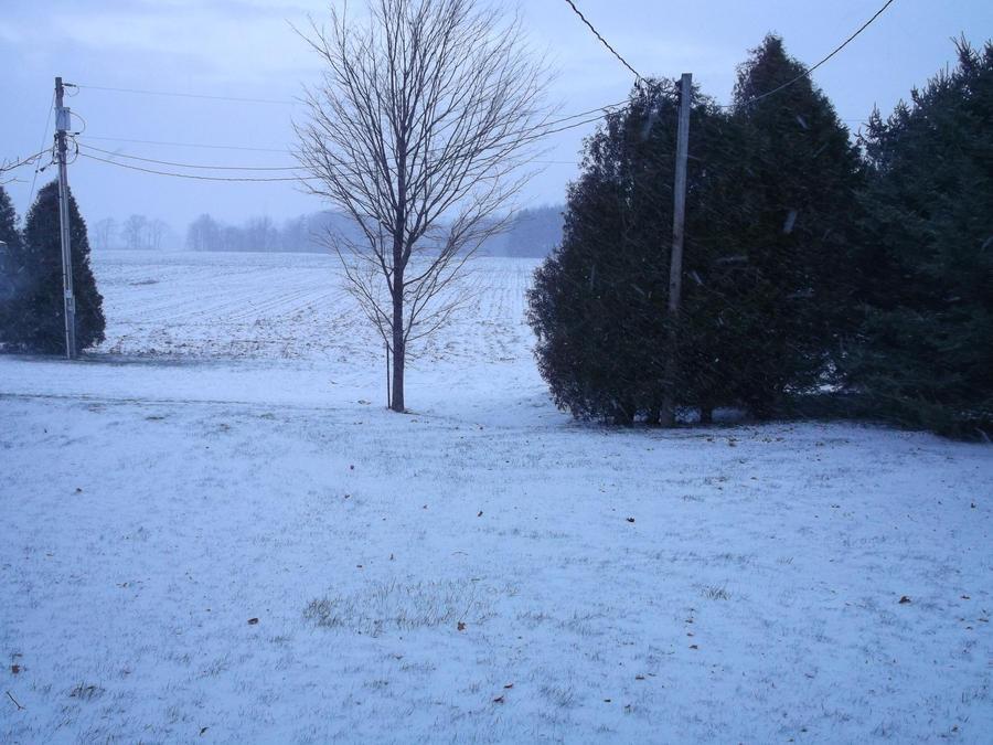 Good Morning, Winter by MegBeth