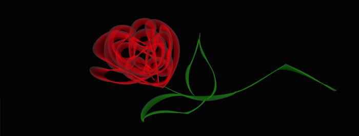 Phantom's Rose