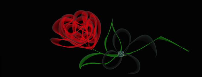 Phantom's Rose II