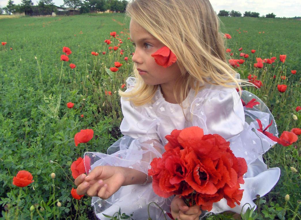 Poppy girl 2 - stock by little-girl-stock on DeviantArt