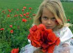 Poppy Girl 3 - Stock