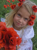 Poppy Girl 4 - Stock by little-girl-stock