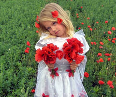 Poppy Girl 6 - Stock by little-girl-stock