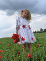 dark clouds and poppies -Srock by little-girl-stock