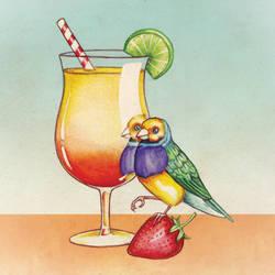 Summer Cocktail