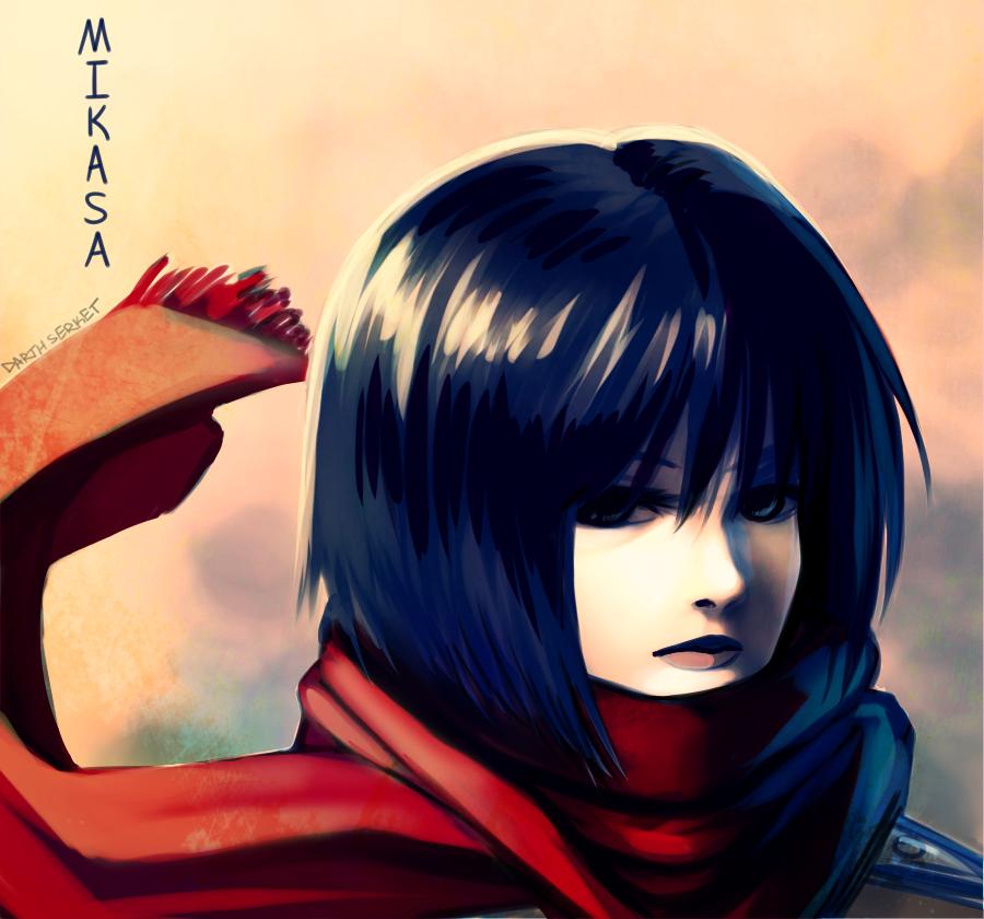 Mikasa es su casa by Rixari on DeviantArt