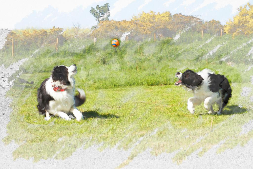 Playtime by zantri