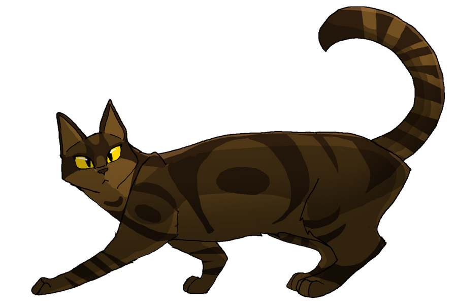 Warriors Cats Dawn Of The Clans