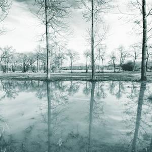The landscape's melodies