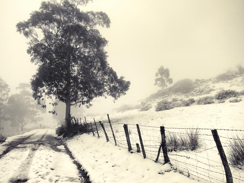 Un poco de invierno by ensilencio
