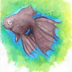 my fishie by YoukoKurama25