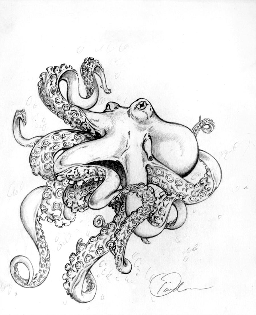 Octopus tentacles drawing tumblr for Cute octopus drawing