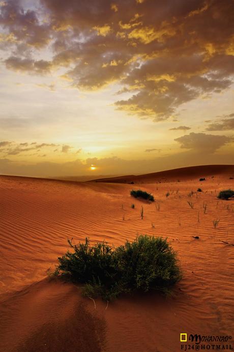 SUNRISE OF DESERT by FJ24