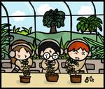 Mandrakes Lesson