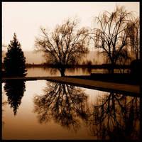 Poem of trees 1 by nicolaperasso