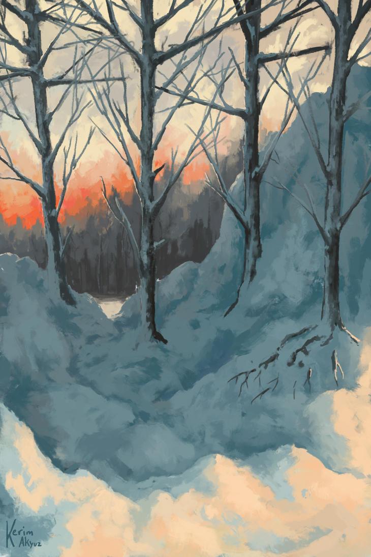 Winter Sleep by kerimakyuz