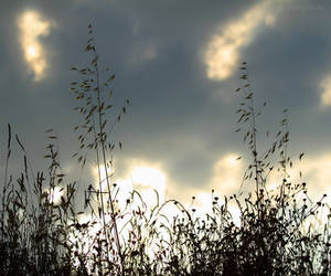 The sun still shines behind the clouds...