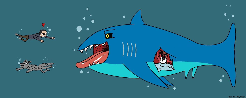 Fear or Love the Shark by ilbv