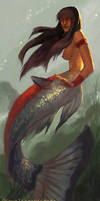 Mermay II: Orinoco River Mermaid