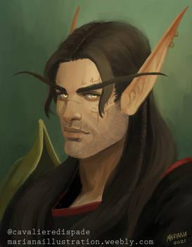 Commission: Character portrait