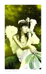 .Dream..Fairies. by AntampantintagiA