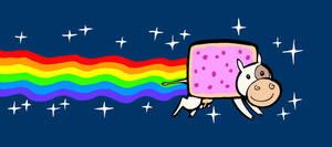Studieren mit Rind: Nyan Kuh