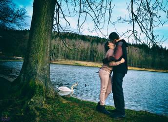 A kiss near swan lake