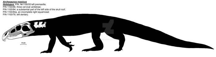 Archosaurus rossicus