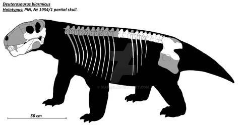 Deuterosaurus biarmicus