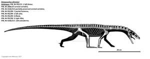 Dongusuchus efremovi