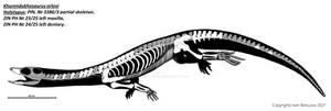 Khurendukhosaurus orlovi