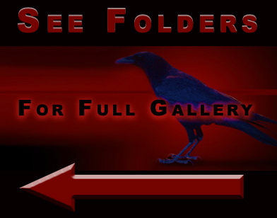 Folders That Way by Ravens-Stock