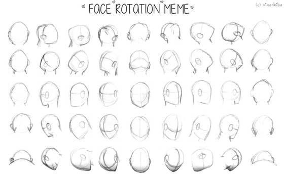Face Rotation Meme