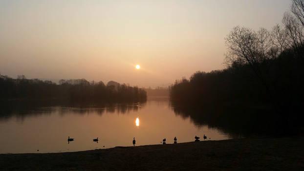 Morning at the Lake I by s8472