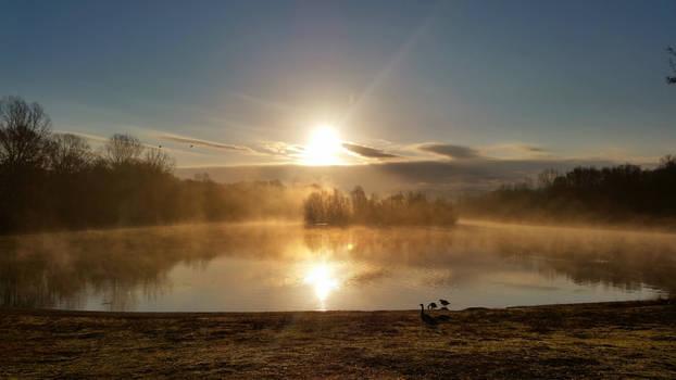 Morning at the Lake II