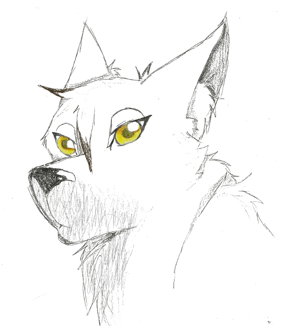 Earthen-wolf-spirit's Profile Picture