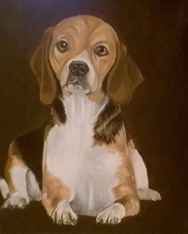 Mr Beagles by JeanBlaze