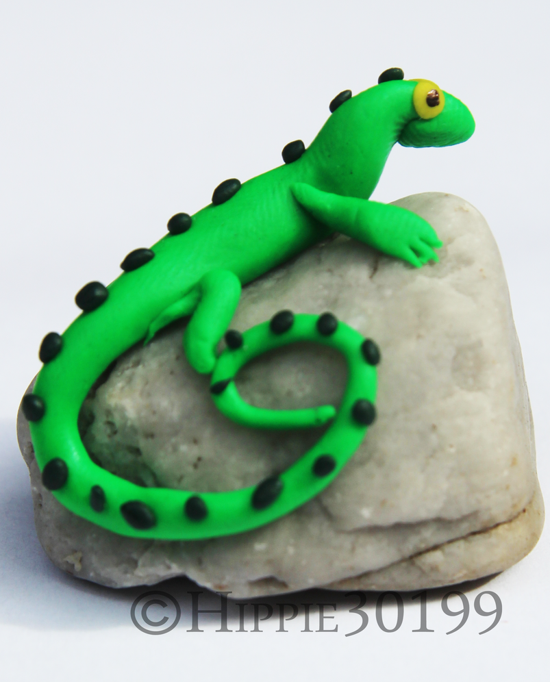 Lizard on a Rock by Hippie30199