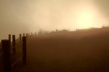 Golden Gate Mist by virgo