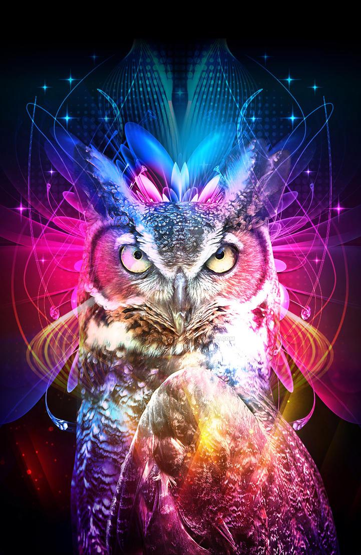 OWL by loveisickprojekt