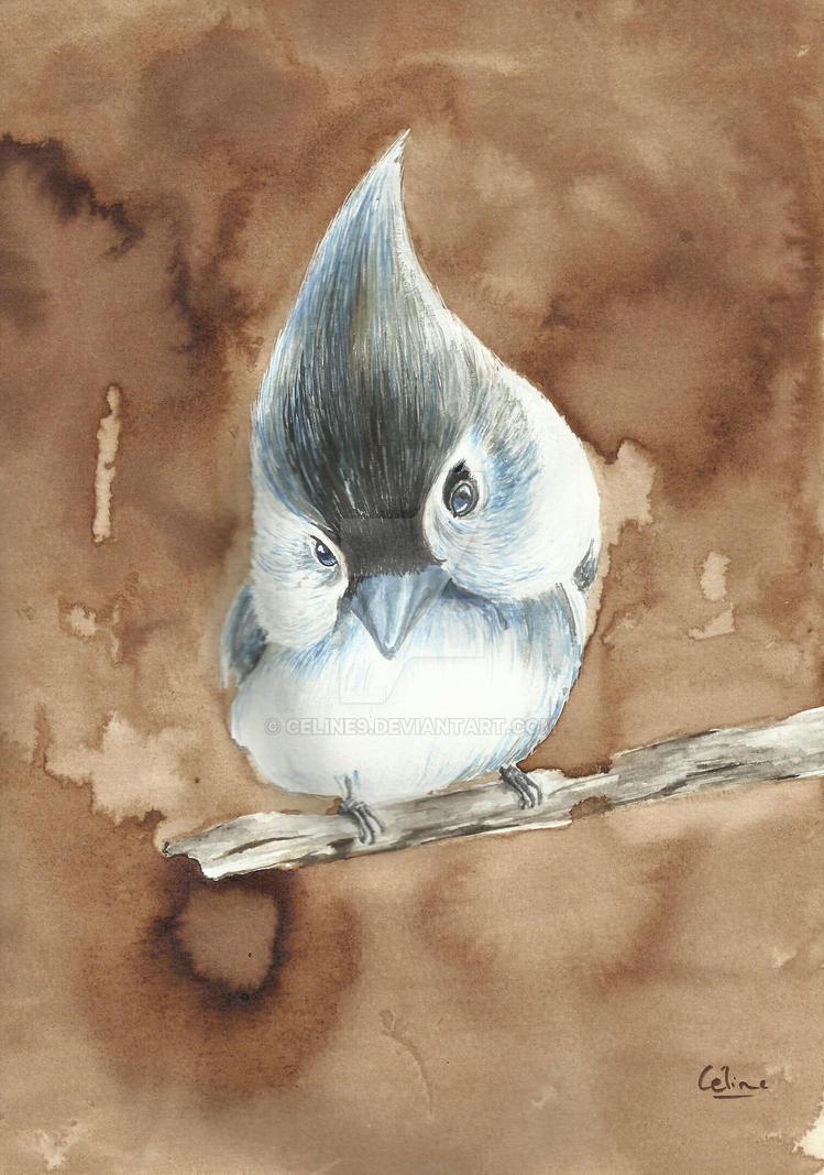 Birdy by Celine9