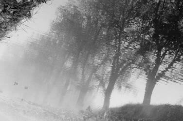 Nebelfluss by Blaetterklingen