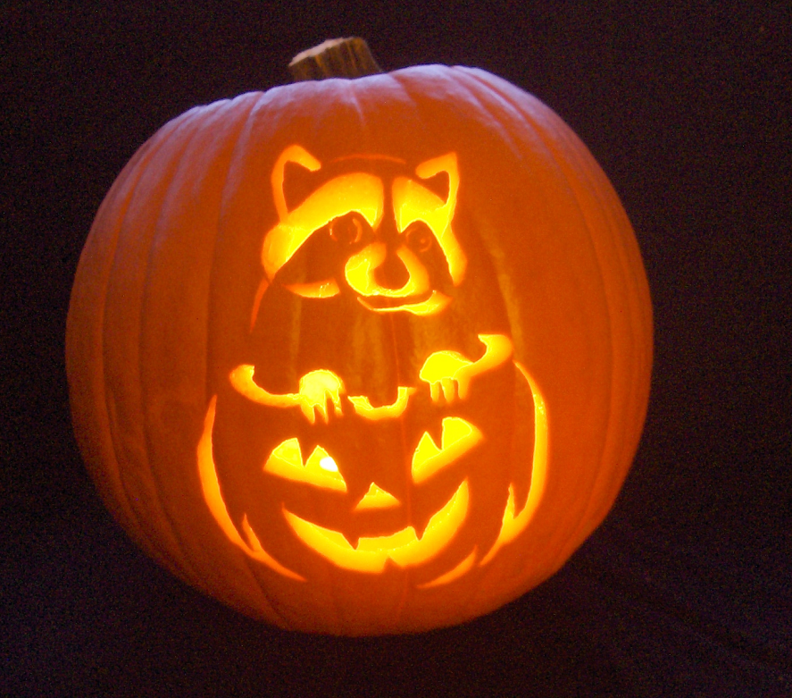 Midnight Bandit Carving By Wolfsax On Deviantart