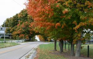Rural Indiana Fall by ferrhousulfate