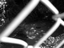 Chainlink rubbish by ferrhousulfate