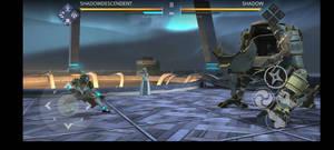 defeting Shadow(in Shadow fight 3)