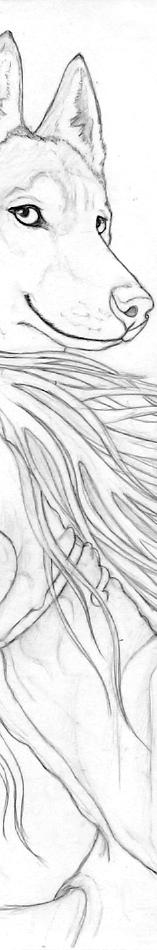 Husky portrait - WIP by Qzurr