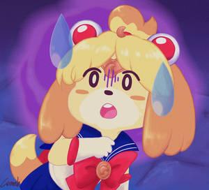 Sailor Isabelle