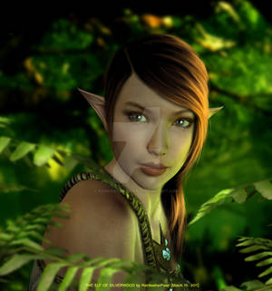 The Elf of Silverwood