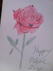 Mother's Day rose by Talaeladar
